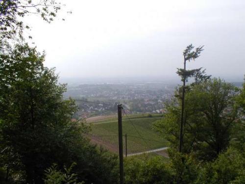 zell-Weierbach2